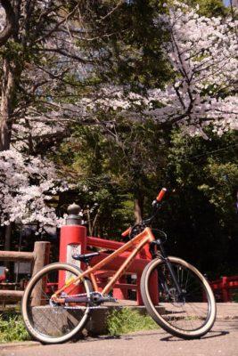 どんなスタイル、バイクでもやっぱりサイクリングは楽しいです。